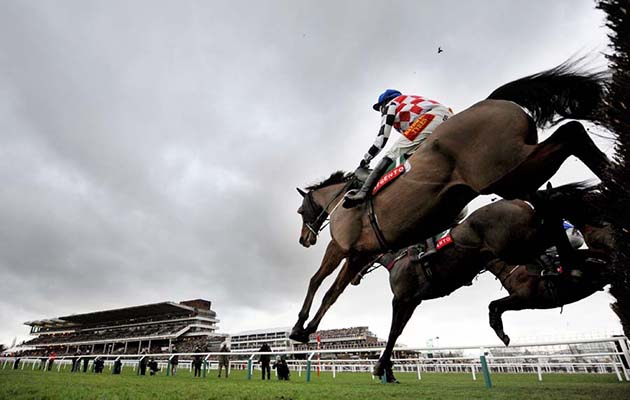 The Giant Bolster (nearside) ob way to winning at Cheltenham pic Bill Selwyn 25-1-14