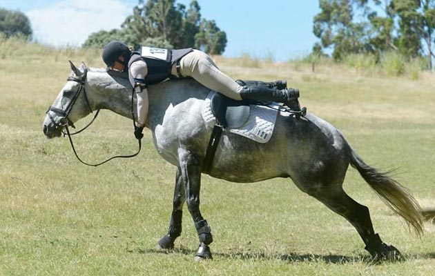 The countdown is on: 11 signs the eventing season is just around the corner - Horse & Hound