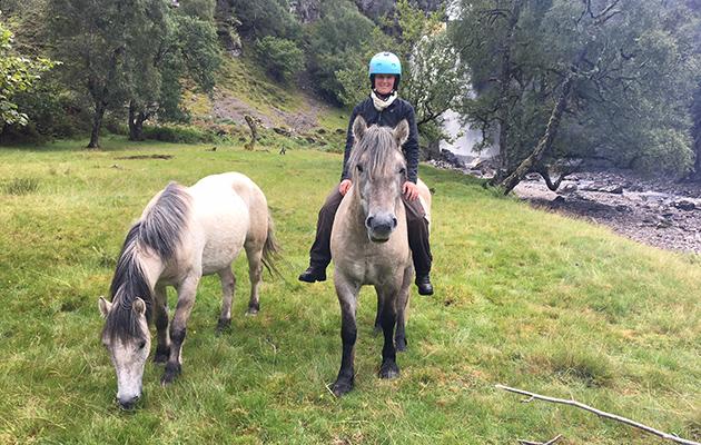 Watch Trainer Cross Scotland With Unbroken Highland Ponies