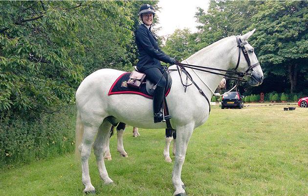 police horse samson
