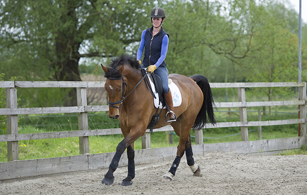 Dressage lesson at Littleton Manor - Steph Lord riding