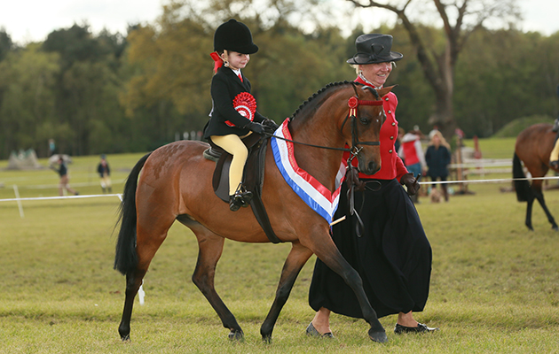 8 ways to set your child up for success in the show ring - Horse & Hound