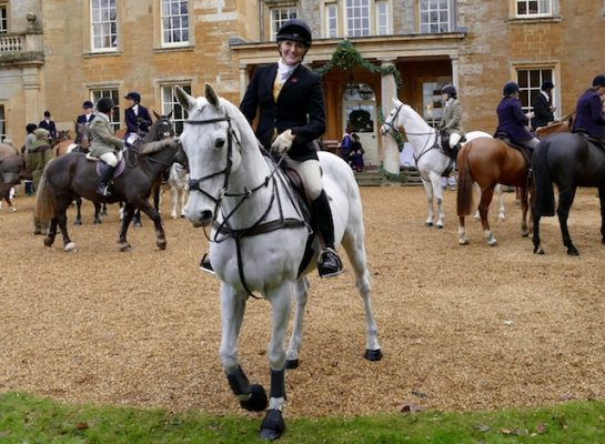 10 Famous Horses We Ve Spotted Out Hunting This Season