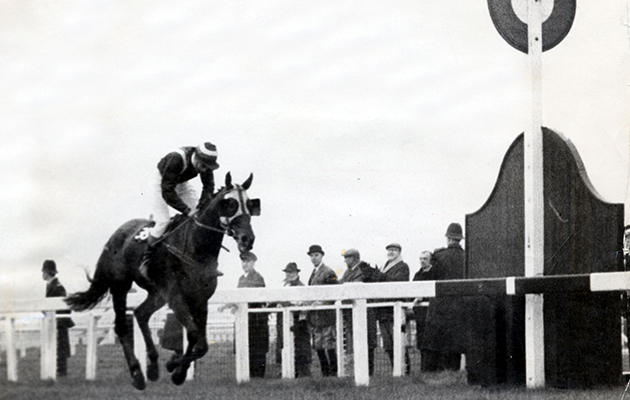 Foinavon Passes The Winning Post. 1967 Grand National At Aintree