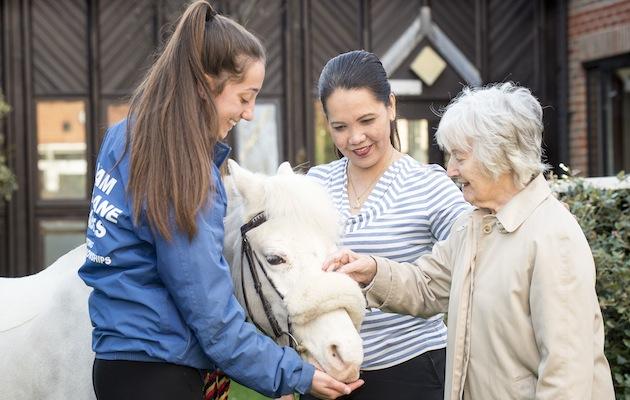 pony therapy