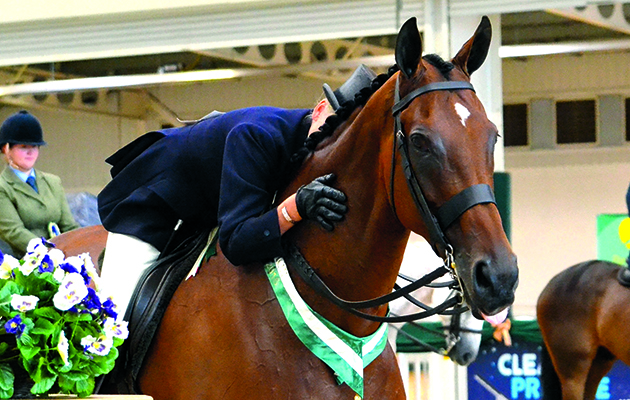 newbury retrained racehorses parade