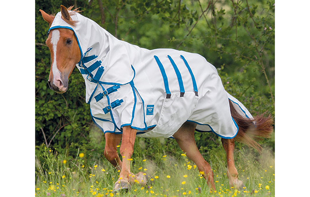 10 Of The Best Sweet Itch Rugs Available Now Horse Hound