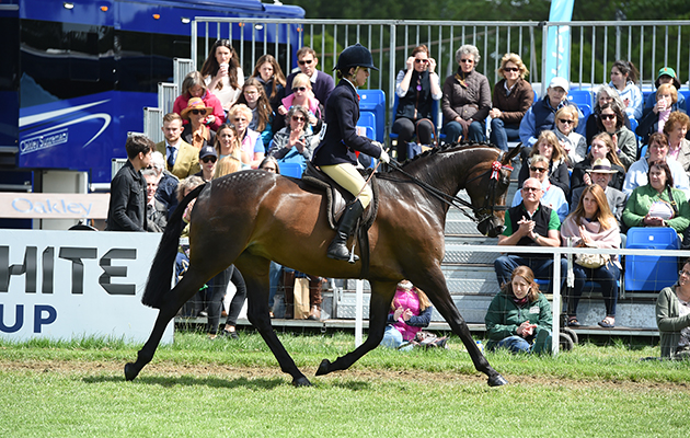 Lucy Glover riding SARISON HEAVENLY SILK, during the Intermediate Championship at the Royal Windsor Horse Show in the p˜uÛþ›ô>õ‰õiK3