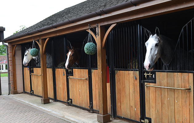 Simon and Natalie's new stable, Walnut House, in the village of Threekingham near Seaford in the county of Lincolnshire in the UK between 10th-14th May 2017