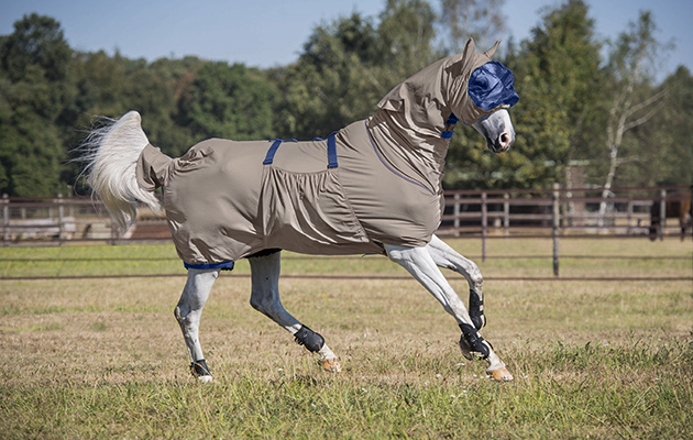 10 Of The Best Sweet Itch Rugs Available Now Horse Amp Hound