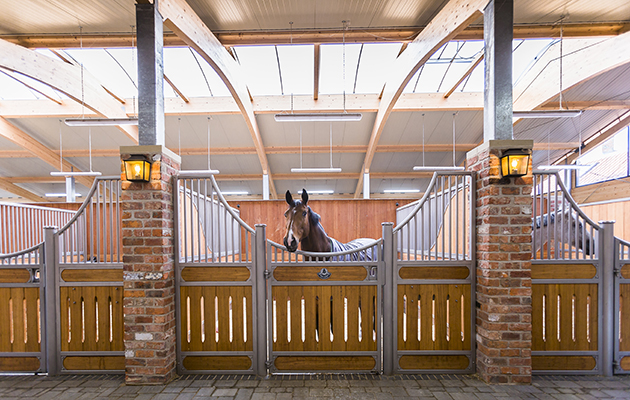 Loose boxes or American barns? H&H investigates the pros and cons