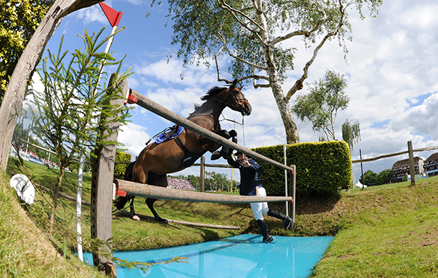 shark infested waters 9 classic water jump fails horse hound