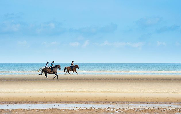 Heres why riding on the beach is more than just a fun day out exercising horses on the beach is more than wish list fodder for riders the health benefits for equine athletes in all disciplines are in high demand sciox Images