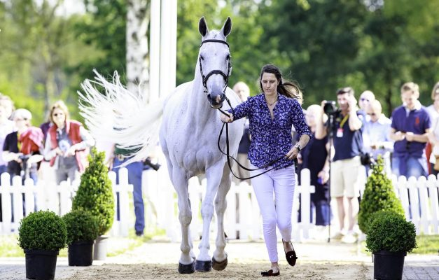 Luhmühlen first trot-up Kirsty Short Cossan Lad