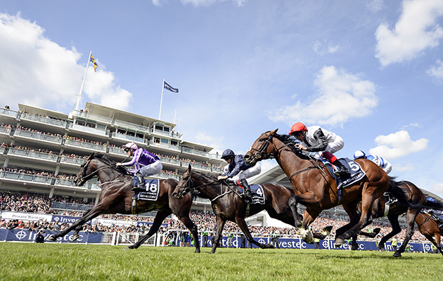 Wings Of Eagles (left) wins the Derby from Cliffs Of Mohair (centre) 2 and Cracksman (right) 3-6-17