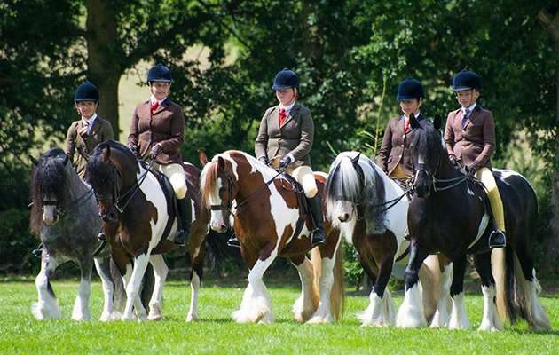 The Team Colosso Skewbald & Piebald Horse and Pony Classes on the first day of the show had cameras snapping