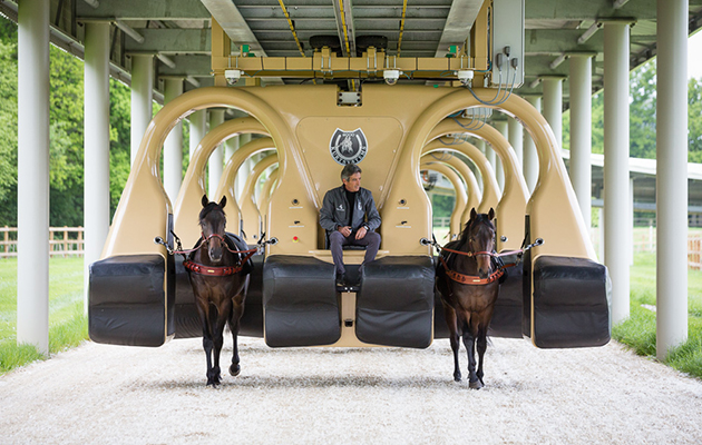 The Future Of Training Racehorses Equine Roller Coaster
