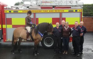 pony rescued cattle grid HOYS