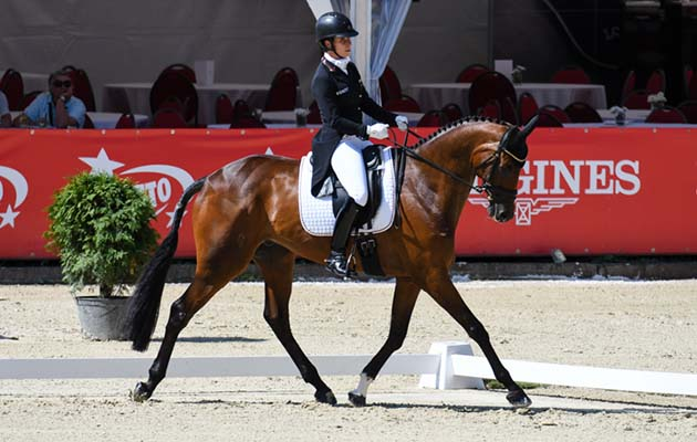 European Eventing Championships dressage Bettina Hoy Seigneur Medicott