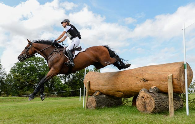 European Eventing Championships cross-country Ingrid Klimke Horseware Hale Bob OLD