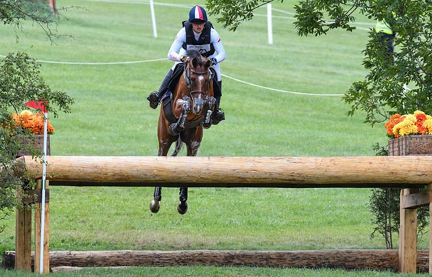 European Eventing Championships horse put down Michal Knap Bob The Builder