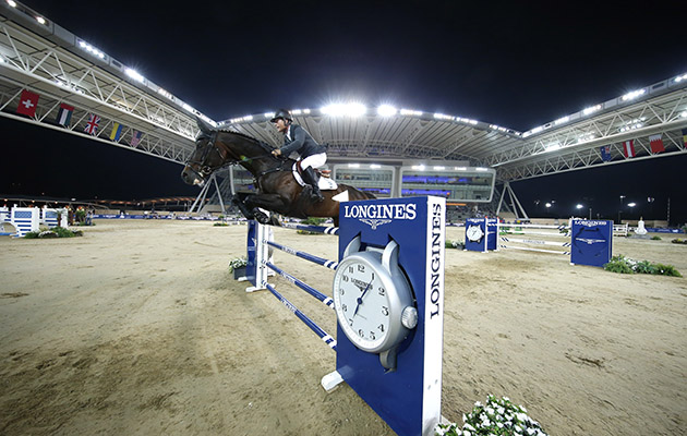 Trade Stands Hoys : Of the hottest tickets for horse lovers this winter