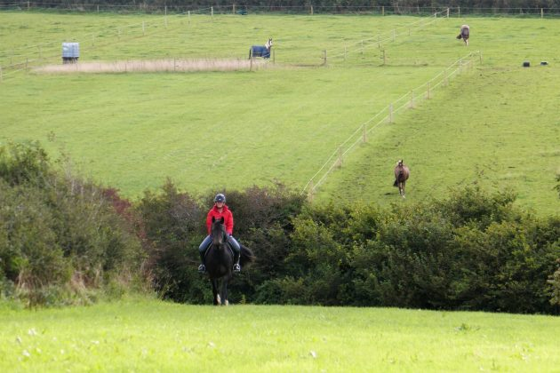 Me cantering Chunky