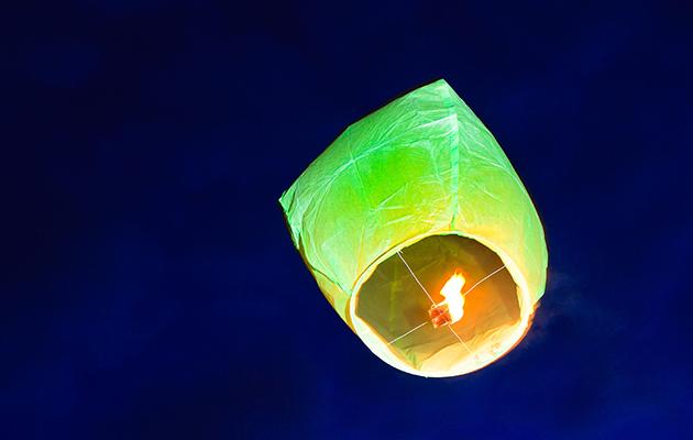 sky lantern zoo fire