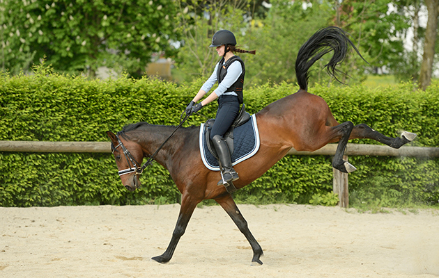K8R4GR Young rider wearing a body protector on back of a bucking horse