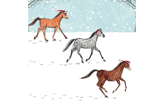 Popular horse charity christmas cards 2016 for Wildlife christmas cards 2016