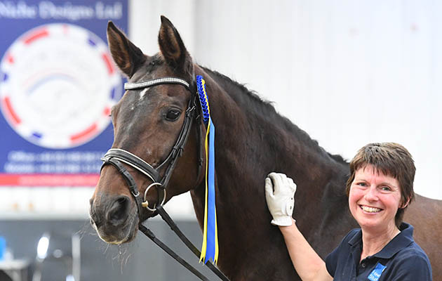 From the rare breed to the dams of world medallists, meet H&H's outstanding mares
