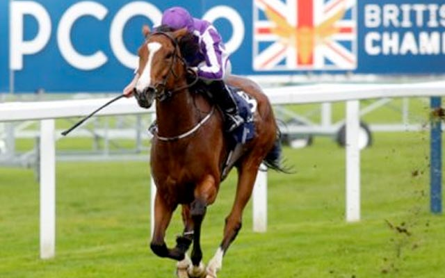 British-Racing-Adv-Hero-image