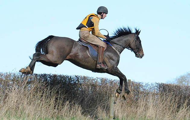 Julian Smyth Osbourne, winner of the Cambridge University Prize, in the Melton Hunt Club Cross Country Ride in 2016, which was sponsored by Lyceums, held at Gorse Farm in Stonesby in Leicestershire in the UK, on the 7th February 2016
