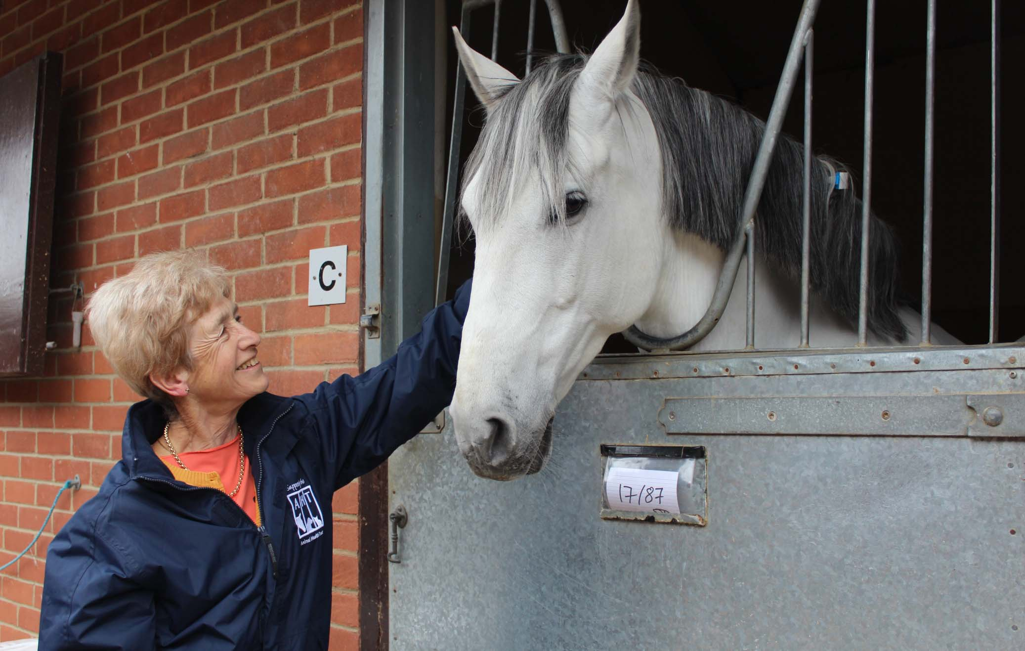 Dr Sue Dyson with horse at Animal Health Trust