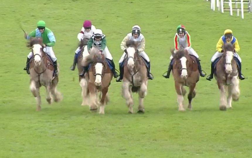 Videos - Horse & Hound