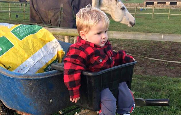 Innovative Wheelbarrow Seat Could Help Horsey Parents