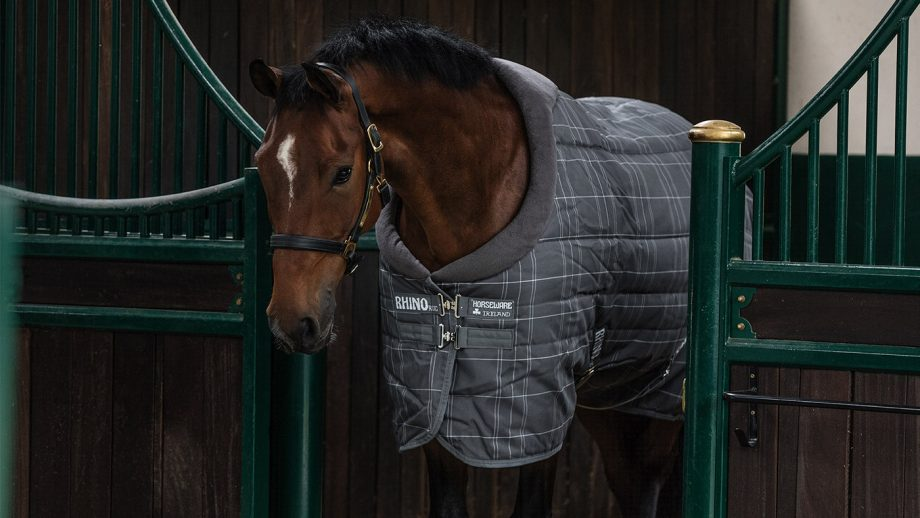 Horseware Rhino Original Vari-Layer medium stable rug