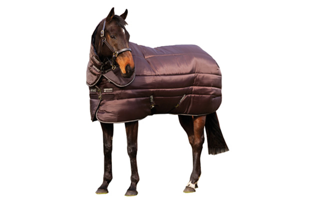 10 Heavyweight Le Rugs Your Horse