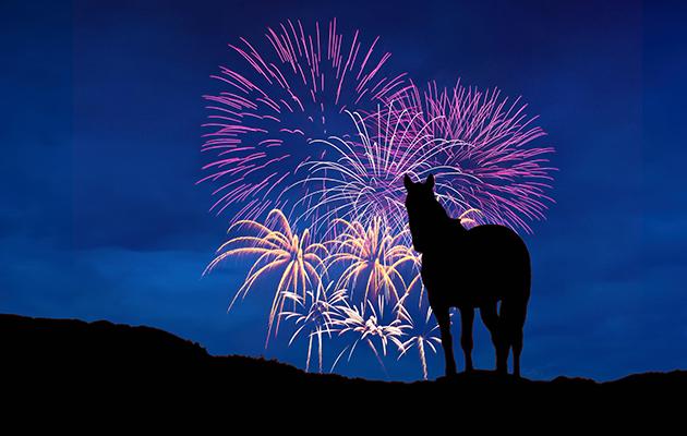 fireworks debate