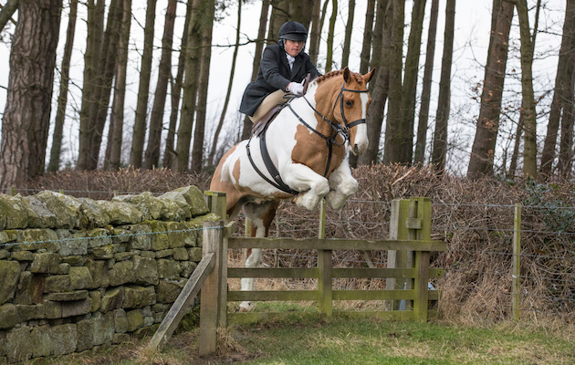 William Pittendrigh side-saddle