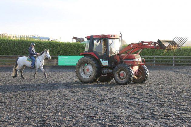 Jason Webb's blog: my heart sinks when I'm handed a dangerous horse in an open field surrounded by wire