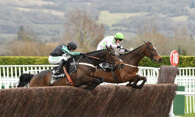 racehorse holidays
