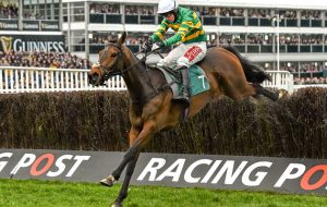 Cheltenham Festival preview 15 March 2016; Minella Rocco, with Derek O'Connor up, on their way to winning the 146th Year of the National Hunt Steeple Chase Challenge Cup. Prestbury Park, Cheltenham, Gloucestershire, England. Picture credit: Seb Daly / SPORTSFILE (Photo by Sportsfile/Corbis via Getty Images)