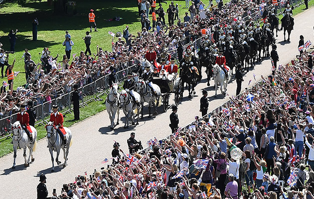 royal wedding horses