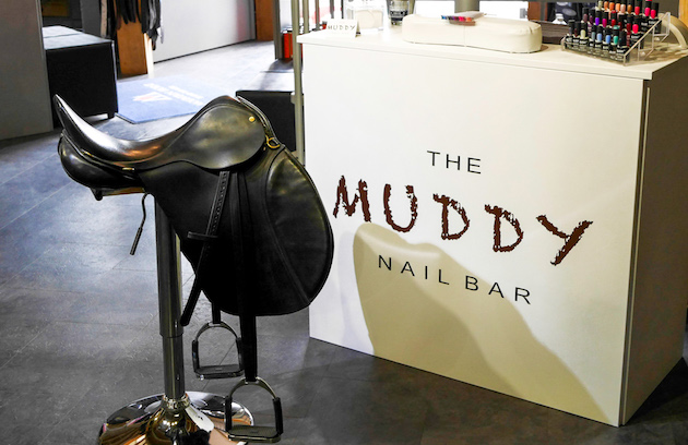 The Muddy Nail Bar Pointers Equine