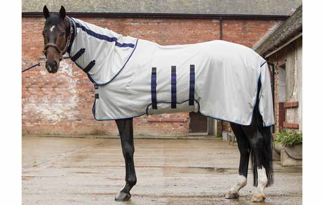 12 Of The Best Fly Rugs To Protect Your Horse This Summer