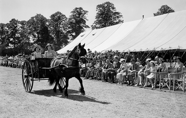 Princesses Elizabeth and Margaret drive past the King and Queen in the War Time Utility Single Driving Class at the Windsor Horse Show.