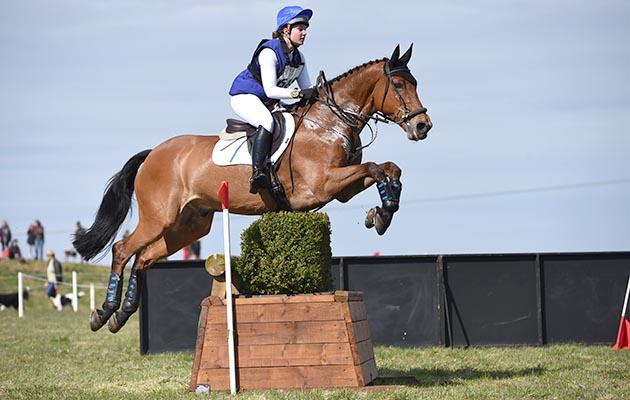 Bolesworth horse death Sligo Luckvalier Ivy Freeman-Attwood
