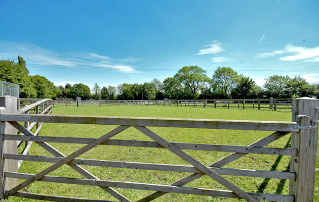 Choosing fencing for a horse paddock