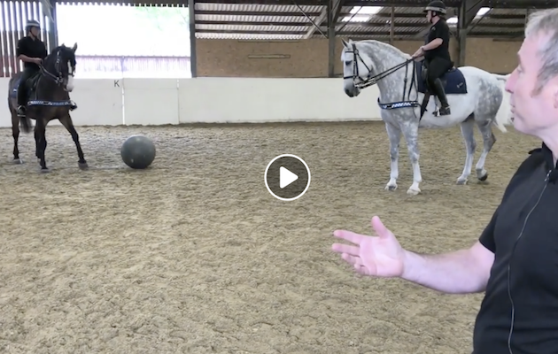 harry kane northumbria police horse